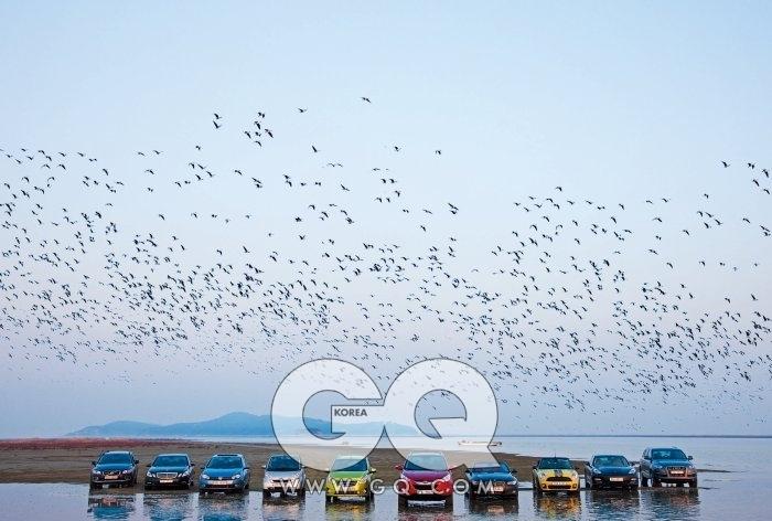 볼보 XC70, 벤츠 E300 아방가르드, 폭스바겐 골프, 스마트 카브리오, 마티즈 크리에이티브, 투싼ix, BMW 335i 컨버터블, 미니쿠퍼S 컨버터블, 포르쉐 파나메라 4S, 아우디 Q7