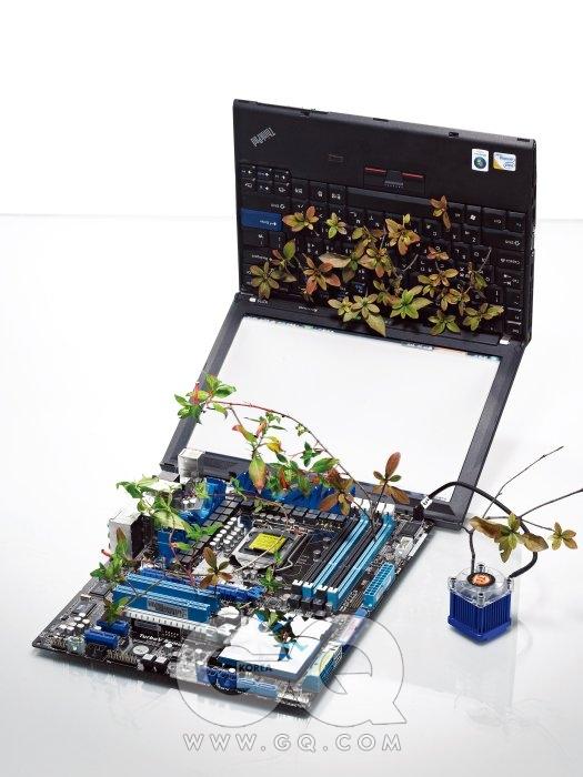 인텔의 i5와 i7 프로세서를 지원하는 최상급 메인보드 P7P55 프리미엄은 40만원대, 아수스. 메인보드에 연결된 칩셋/ 노스브리지 쿨러 스피릿 A100은 2만5천원, 써멀테이크 by 피에스코. 사무적인 디자인의 12인치형 스테디셀러 싱크패드 X200은 사양에 따라 1백30만원대~2백50만원대,레노버. 노트북 키보드에 꽂힌 가지는 철쭉. 메인보드에는 담배초.