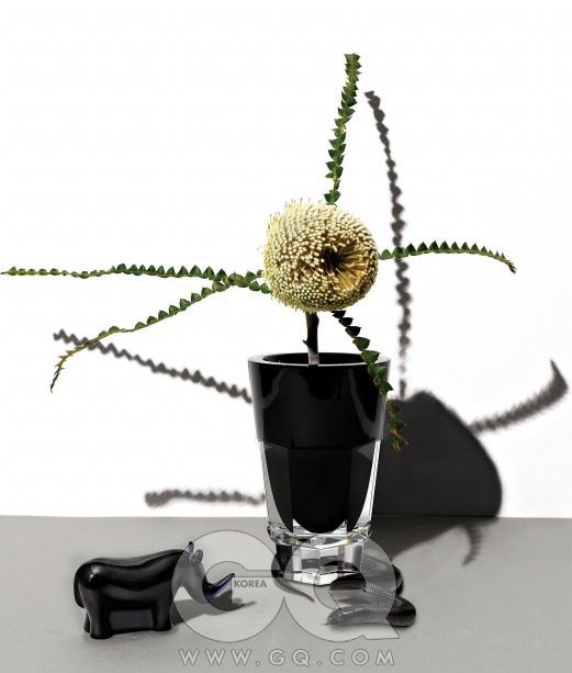 크리스털 꽃병 'Abysse' 시리즈 1백95만원, 코뿔소 모양 장식품 34만원, 모두 바카라.꽃은 방크샤 7천원, 고속버스터미널 화훼상가. 뱀은 블랙 킹.
