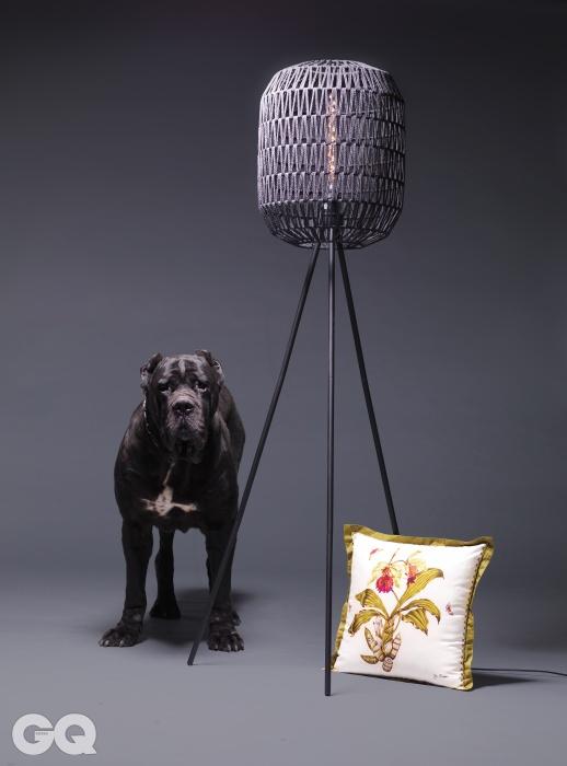 종이를 꼬아 그물처럼만든 셰이드와 철제 다리가 있는플로어 램프 '세스티노'. 160cm, 43만원, KARE. 난초가 프린트된 실크 쿠션 5만6천원, 짐 톰슨.케인 코르소의 이름은 무등.