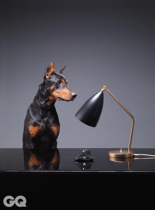 그레타 M. 그로스맨이 디자인한테이블 램프 '그래스하퍼'. 높이 42.2cm, 79만원, GUBI by 이노메싸. 남한강오석. 도베르만의 이름은 토토.