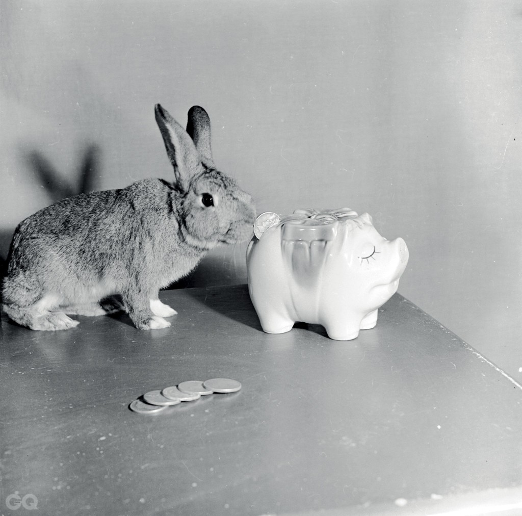 circa 1956:  A rabbit investigating a piggy bank.  (Photo by Evans/Three Lions/Getty Images)