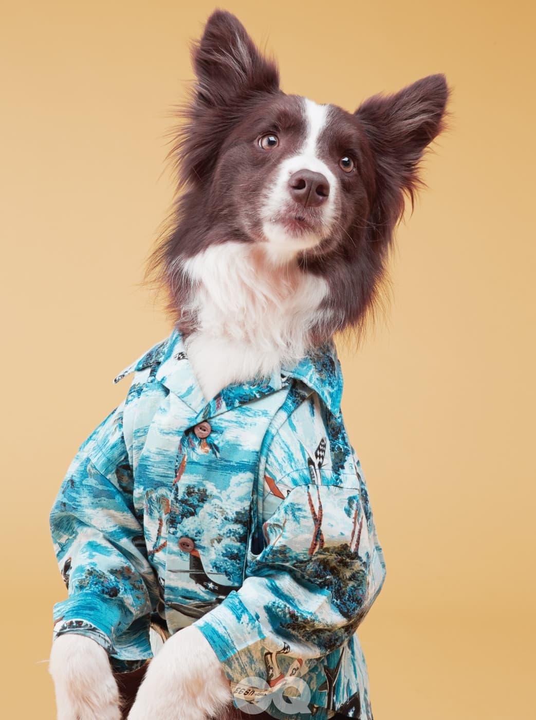 보더 콜리 아카 ㅣ 새파란 바다와 하얗게 부서지는 파도를 그려 넣은 하와이안 셔츠 38만9천원, RRL.