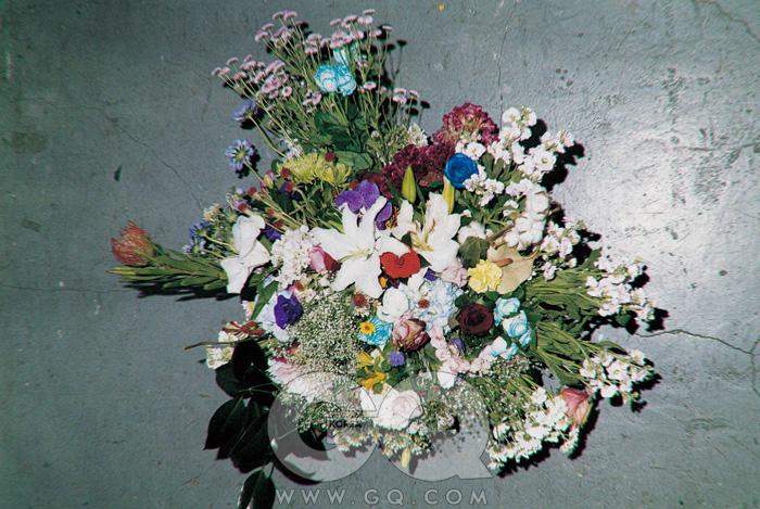 2008년 11월 6일부터 9일까지, 루 스튜디오에 모인 꽃. 의 2008년 365일에 대한 아름다운 헌사.