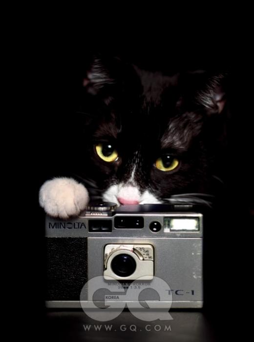 촬영 중인 자동 필름카메라 TC-1은 중고가 60만원 전후, 미놀타.