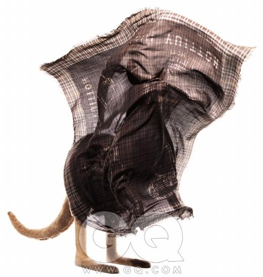 체크무늬 트렁크 숄 1백만5천원, 루이 비통.
