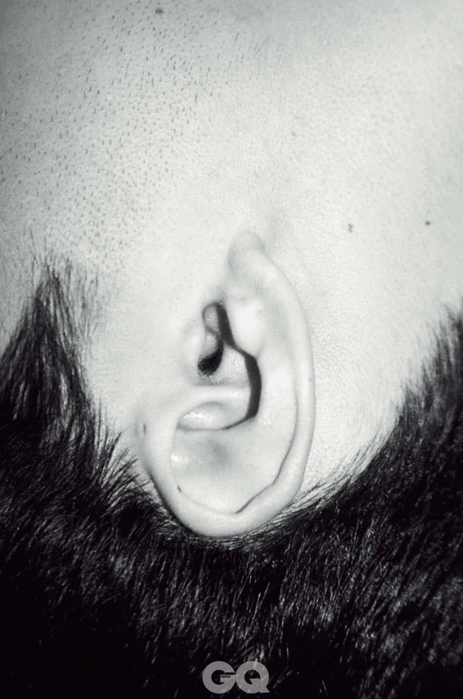 hannam_귀